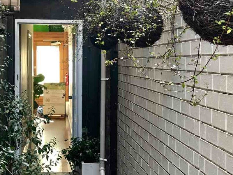 Courtyard of clinic for Victoria Sports and Rehabilitation Clinic - Abbotsford Osteopaths | Osteopathy | Osteopath | Osteo